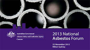 National-Asbestos-Forum-2013---BB-Presentation-1